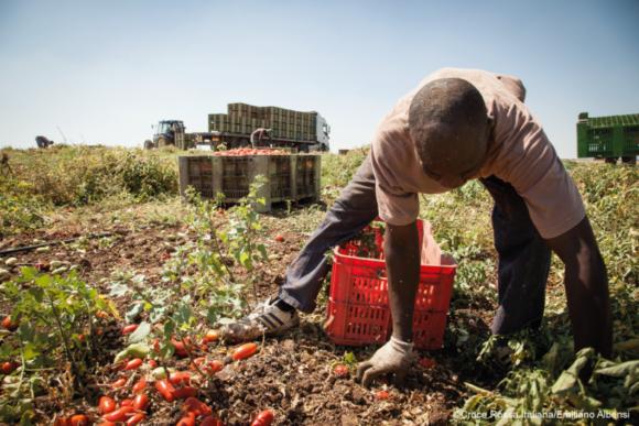 FARm, progetto FAMI dell'università di Verona contro sfruttamento lavorativo in agricoltura e caporalato. Associazione Lule Partner in lombardia emersione